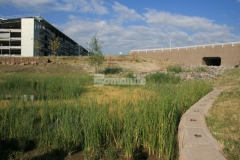 Bomanite Grasscrete pervious concrete was installed here to reduce site runoff and the integrally colored concrete helps to maintain a natural aesthetic while allowing the native planting in the pond to grow through the voids.