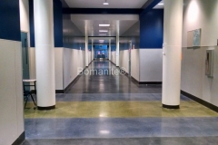 Bomanite Custom Polishing Patene Teres at Clovis East High School hallway by Heritage Bomanite.